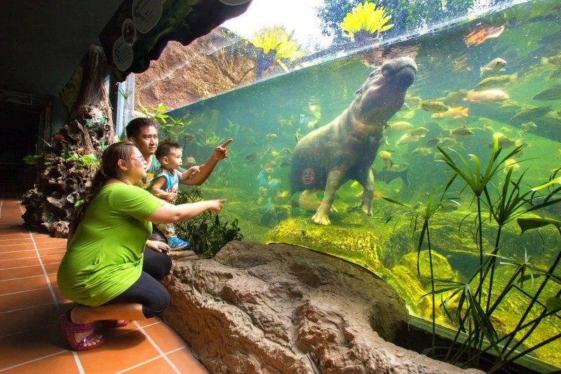 Фото зоопарка Као Кео