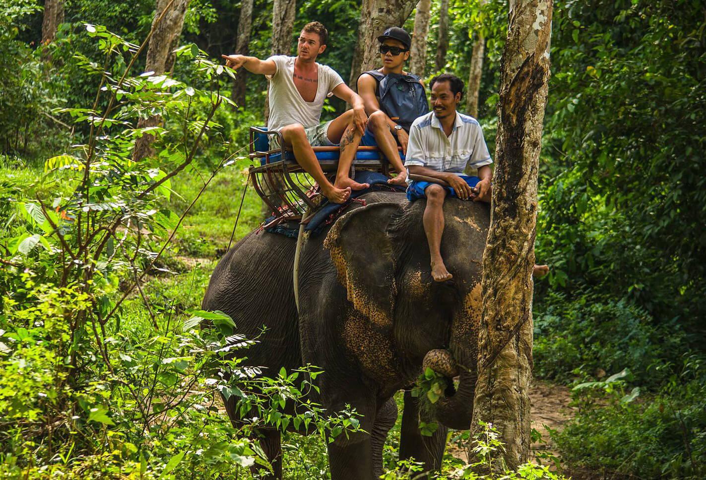 Прогулка на слонах на острове Ко Чанг, Таиланд
