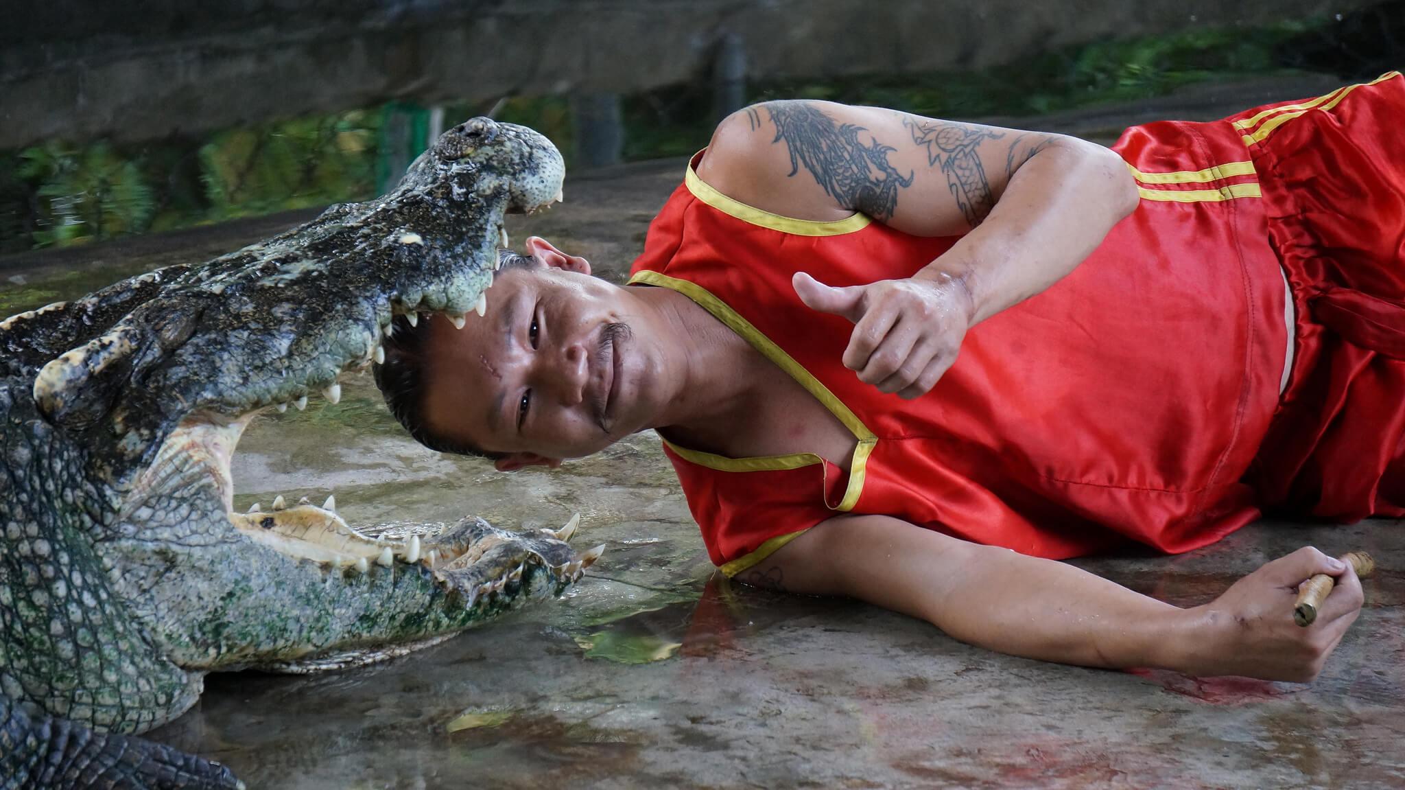 Самуи отдых с детьми, фото крокодиловой фермы