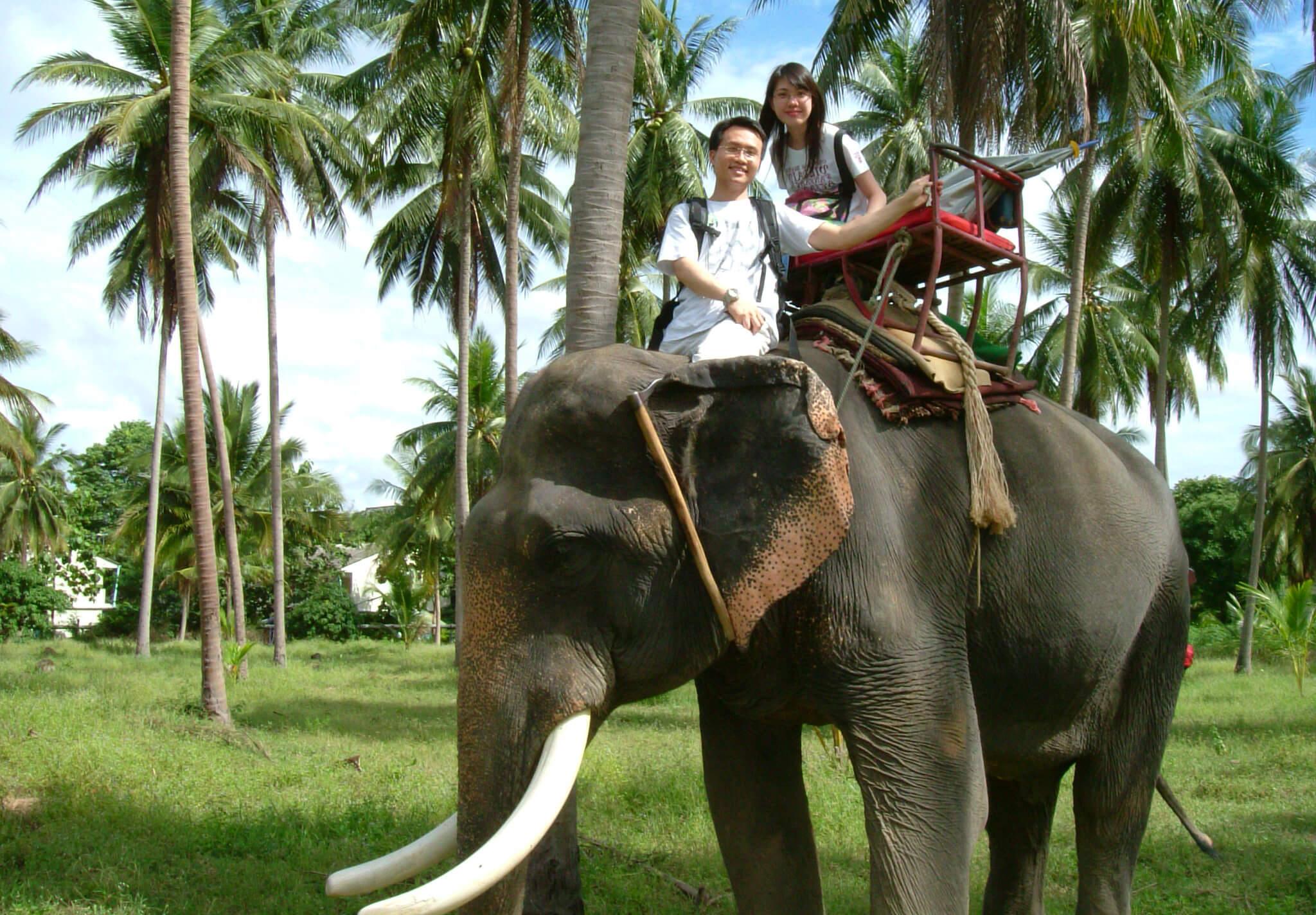 Самуи отдых с детьми, фото езды на слонах