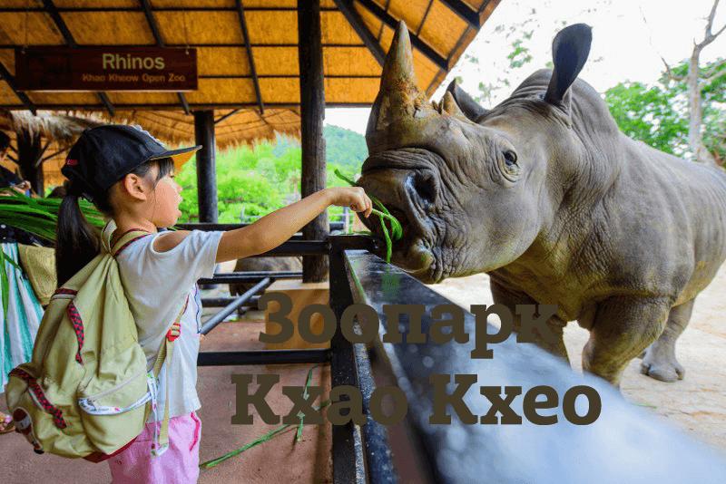 """Фотография к статье """"Зоопарк Кхао Кхео в Паттайе. Цены, фото, карта на русском языке"""""""