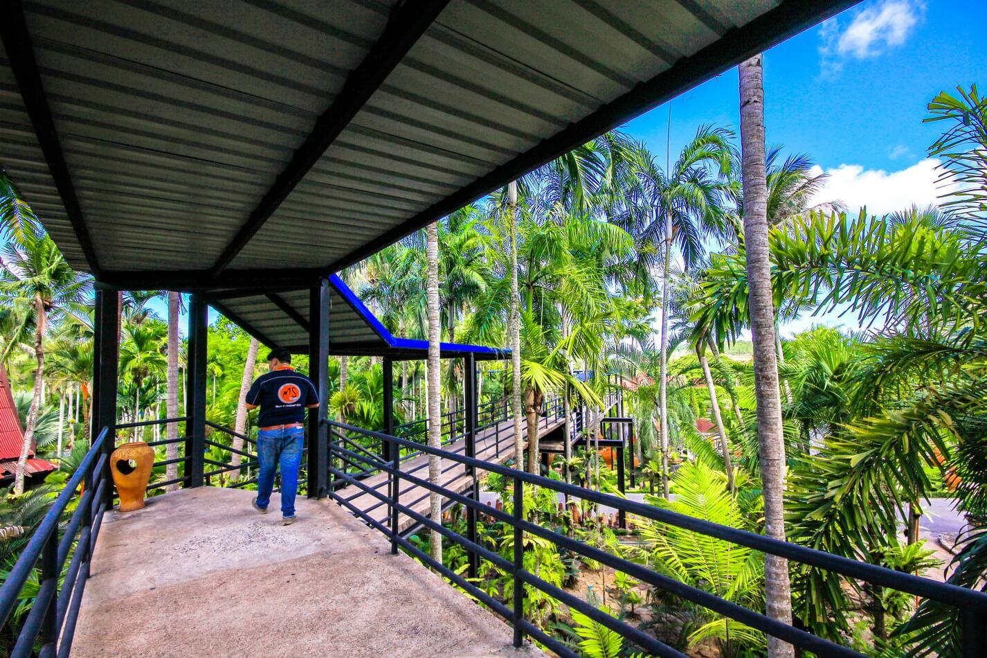 Фото эстакады SKYWALK в тропическом саду Нонг Нуч