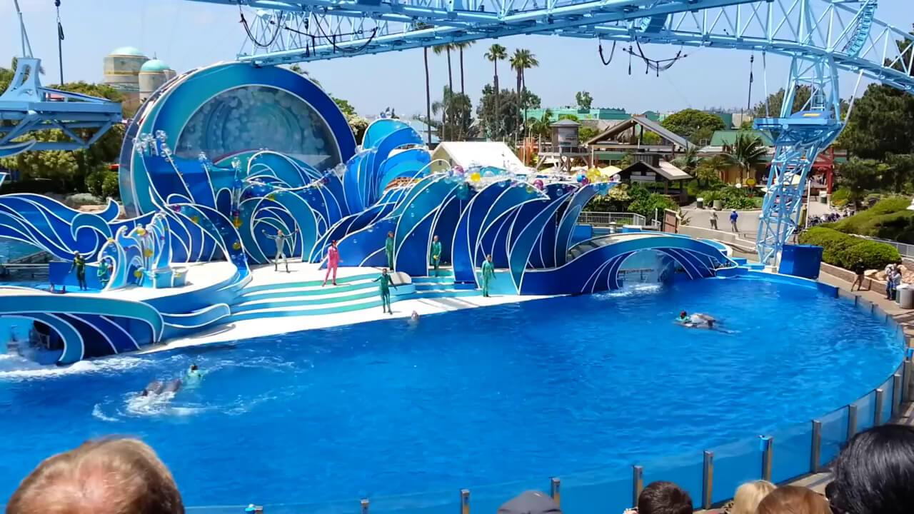 foto-delfinariya-pattaya-dolphin-world (2)