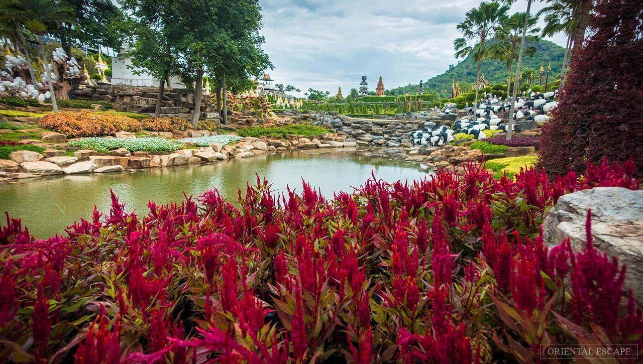 Фото тропического сада Нонг Нуч